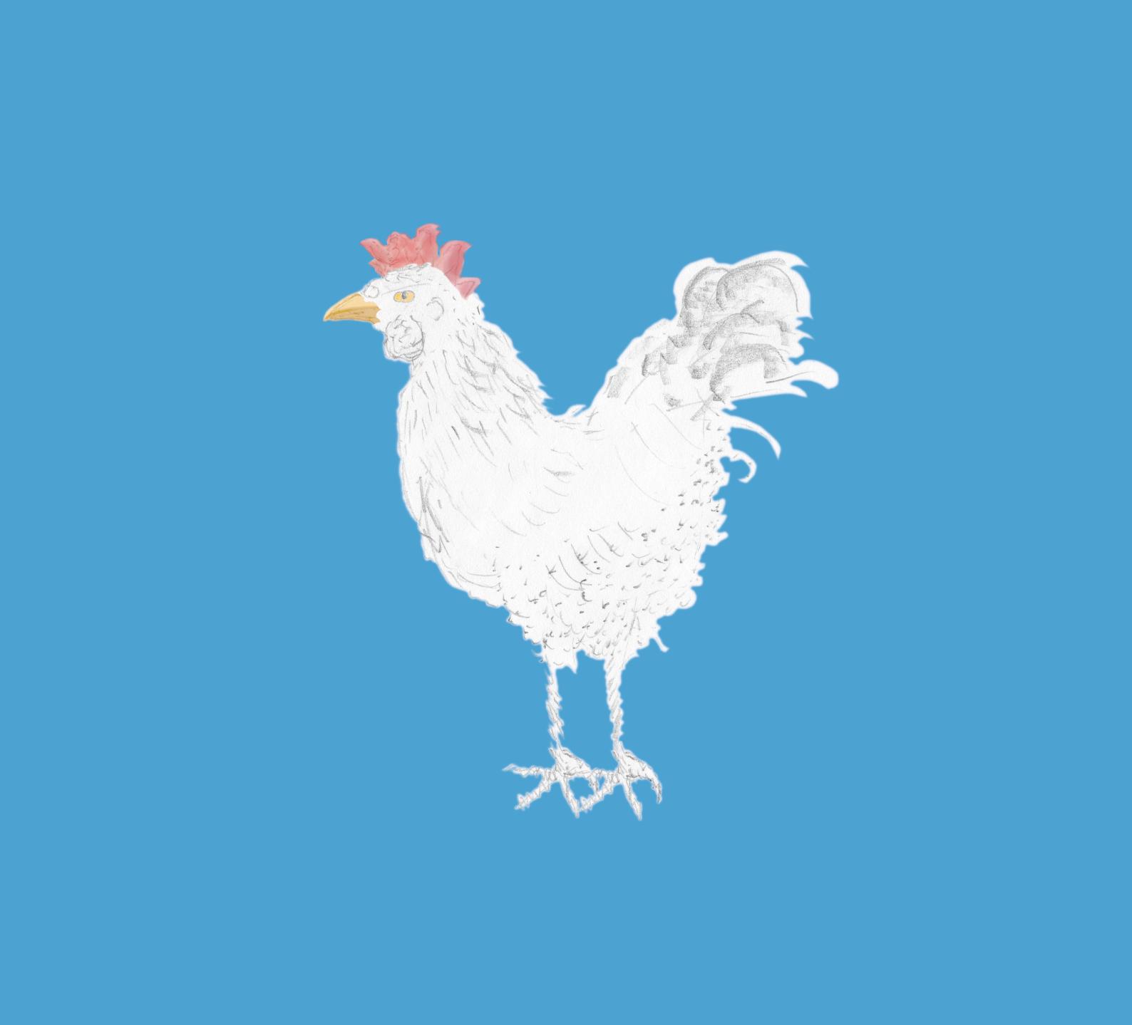 Huhn durch Schwerter Sketcher Gabi Schwalb